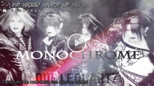 monochrome t
